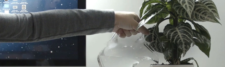 En person vanner en plante
