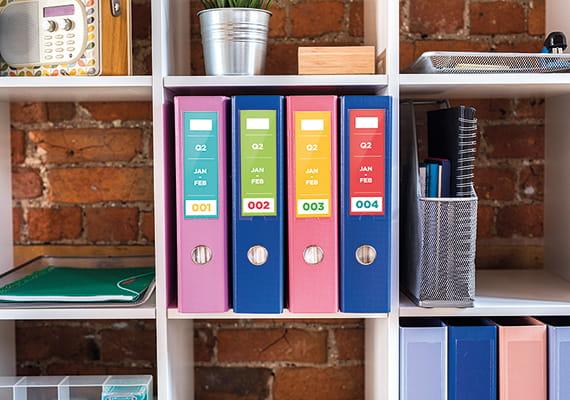 Fire fargerike arkivmapper med merkelapper organisert i en bokhylle
