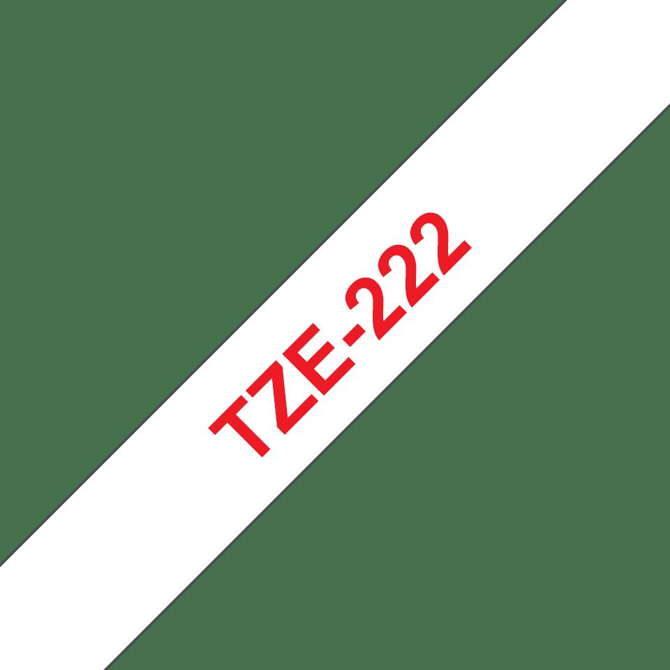 TZe222_main
