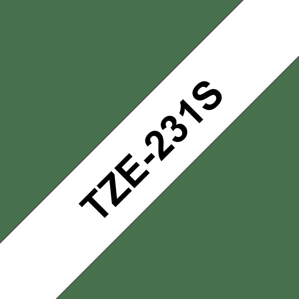 TZe231S2