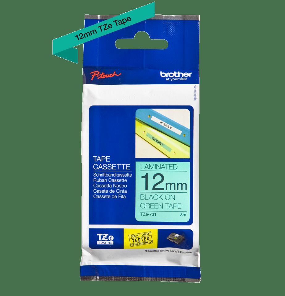 TZe-731 2